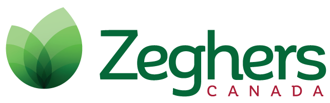 Zeghers Seed